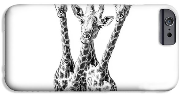 What Are You Looking At?  IPhone 6s Case by Diane Diederich