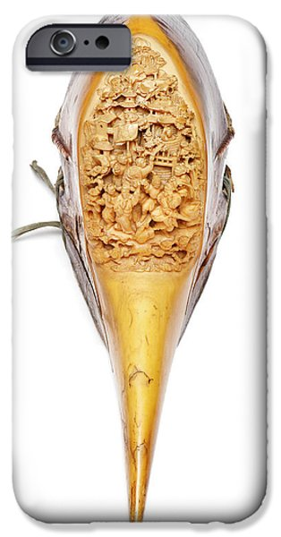 Carved Hornbill Skull IPhone 6s Case