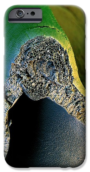 Broccoli IPhone 6s Case by Stefan Diller