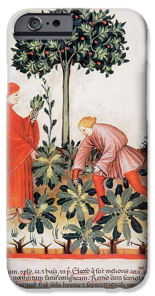 Tacuinum Sanitatis, Medieval Health IPhone Case by Prisma Archivo