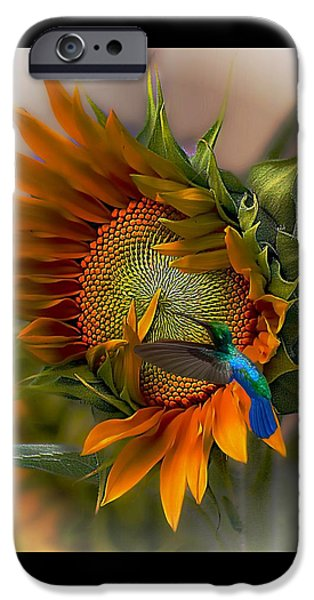 Sunflower iPhone 6s Case - A Moment In Time by John  Kolenberg