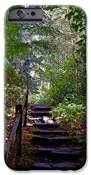 A Wooded Path IPhone 6s Case by Anthony Baatz