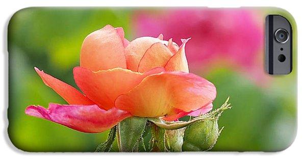 A Young Benjamin Britten Rose IPhone 6s Case