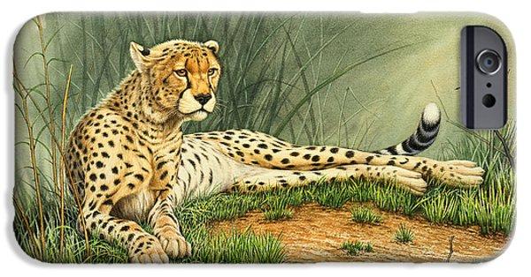 Cheetah iPhone 6s Case - Alert Repose  - Cheetah by Paul Krapf