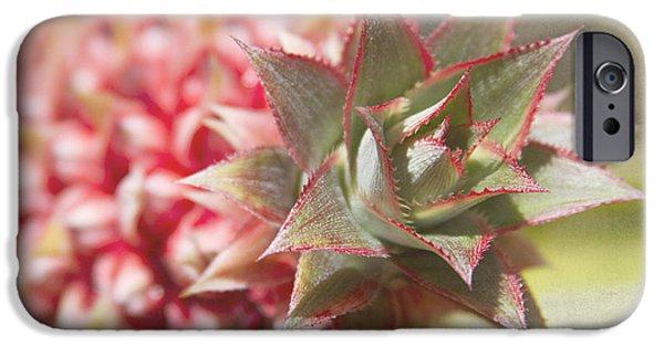 Ananas Comosus - Pink Ornamental Pineapple IPhone 6s Case