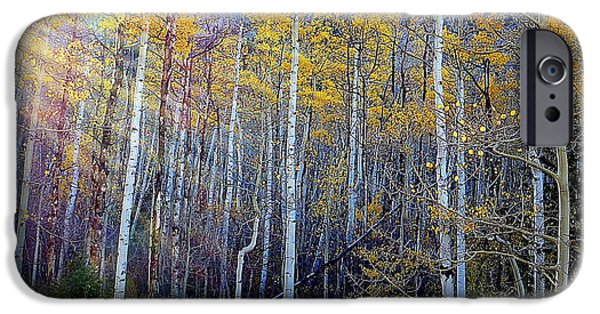 IPhone 6s Case featuring the photograph Aspen Sunset by Karen Shackles