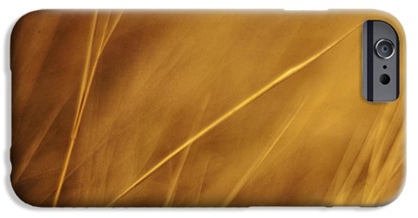 Aurum IPhone 6s Case by Priska Wettstein