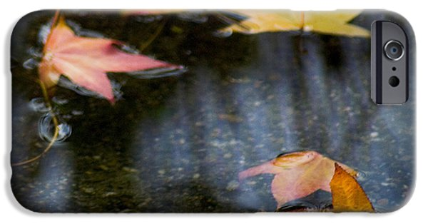 Autumn Leaves On Water IPhone 6s Case