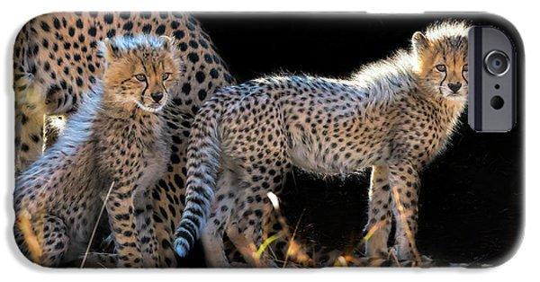 Cheetah iPhone 6s Case - Baby Cheetahs by Jun Zuo