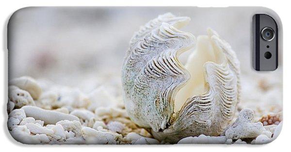 Beach iPhone 6s Case - Beach Clam by Sean Davey