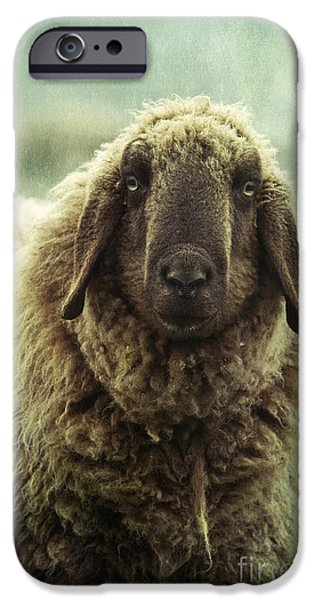 Sheep iPhone 6s Case - Besch Da Pader by Priska Wettstein