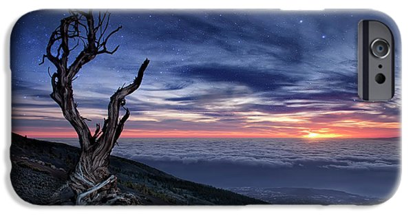 Canary iPhone 6s Case - Beyond The Sky by Andrea Auf Dem
