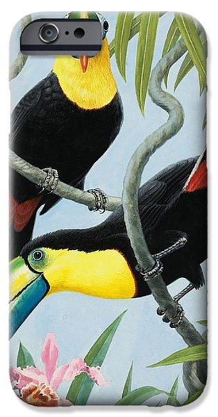 Big-beaked Birds IPhone 6s Case