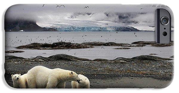 Polar Bear iPhone 6s Case - Birds by Mathilde Collot