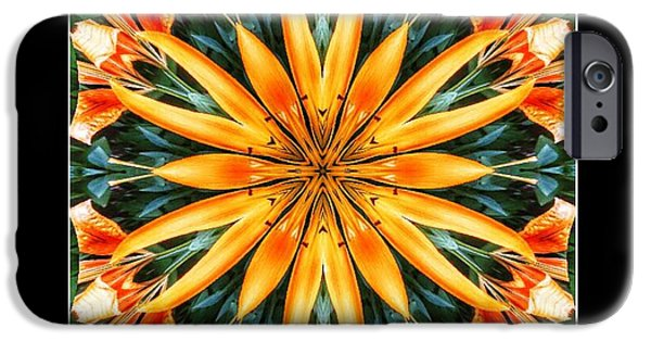 Birthday Lily For Erin IPhone 6s Case by Nick Heap