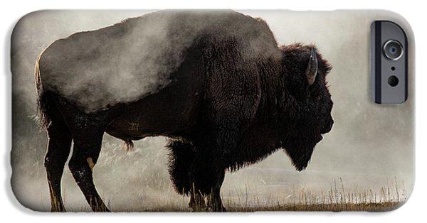 Bison iPhone 6s Case - Bison In Mist, Upper Geyser Basin by Adam Jones
