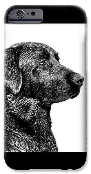 Dog iPhone 6s Case - Black Labrador Retriever Dog Monochrome by Jennie Marie Schell