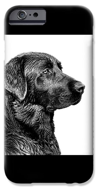Black Labrador Retriever Dog Monochrome IPhone 6s Case