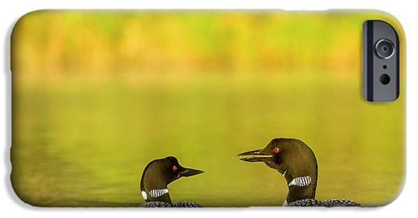 Breeding Pair Of Common Loons IPhone 6s Case