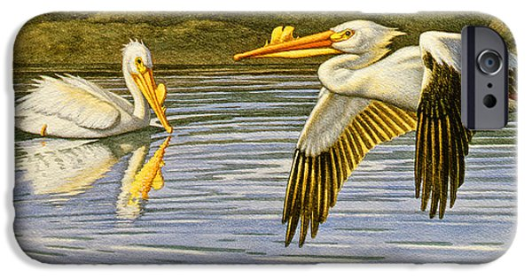 Pelican iPhone 6s Case - Breeding Season- White Pelicans by Paul Krapf