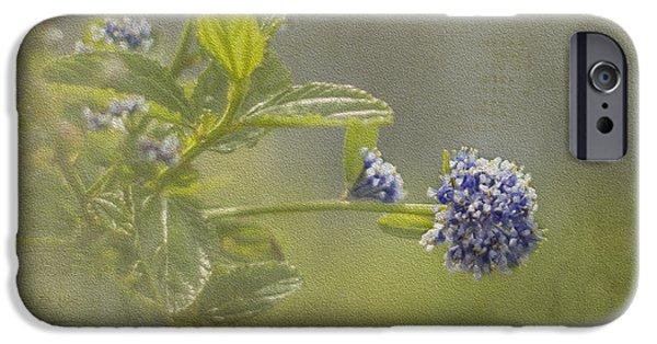 California Lilac IPhone 6s Case