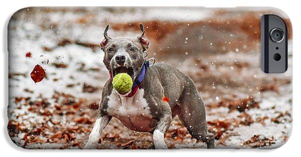 Tennis iPhone 6s Case - Catch The Ball. by Davorin Volav?ek