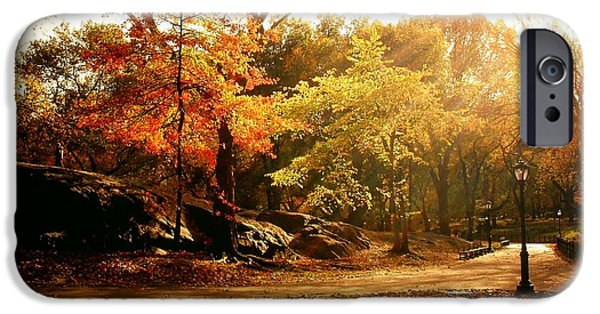 New Leaf iPhone 6s Case - Central Park Autumn Trees In Sunlight by Vivienne Gucwa