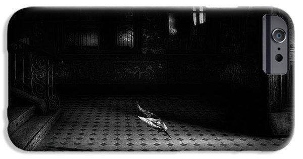 Dove iPhone 6s Case - Chance Encounter by Holger Droste