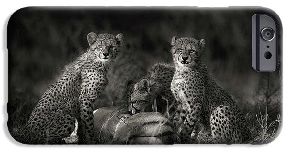 Cheetah iPhone 6s Case - Cheetah Cubs by Mario Moreno