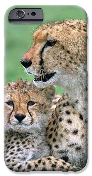 Cheetah Mother And Cub IPhone 6s Case