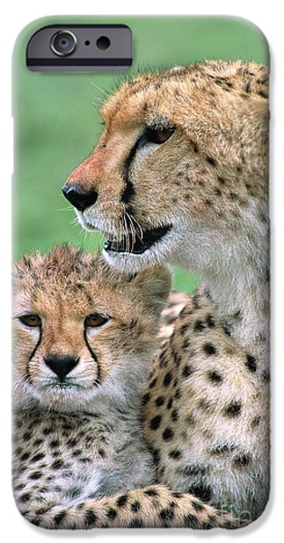 Cheetah Mother And Cub IPhone 6s Case by Yva Momatiuk John Eastcott