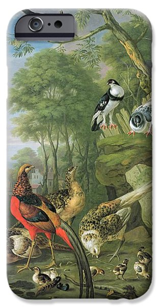 Magpies iPhone 6s Case - Cock Pheasant Hen Pheasant And Chicks And Other Birds In A Classical Landscape by Pieter Casteels