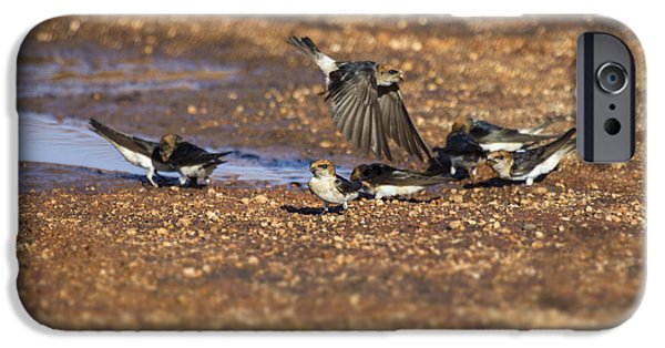 Collecting Mud IPhone Case by Douglas Barnard