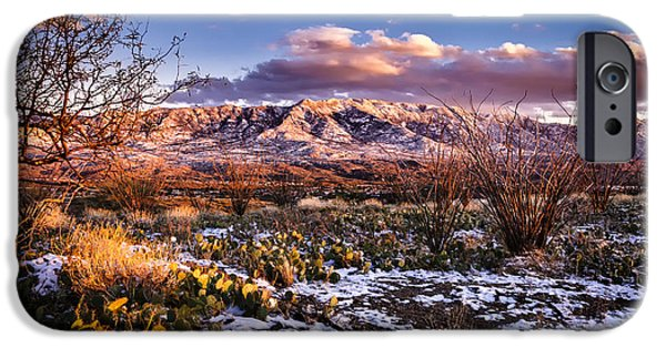 Colors Of Winter IPhone 6s Case by Mark Myhaver