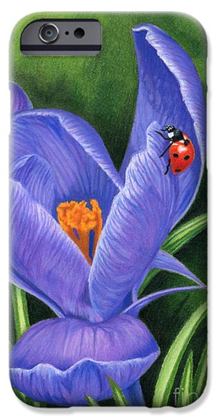 Crocus And Ladybug IPhone 6s Case