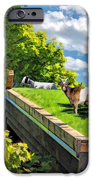 Door County Al Johnsons Swedish Restaurant Goats IPhone 6s Case by Christopher Arndt