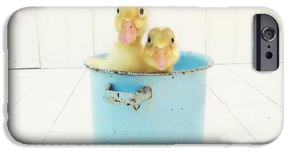 Duck Soup IPhone 6s Case