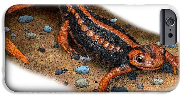Newts iPhone 6s Case - Emperor Newt by Roger Hall