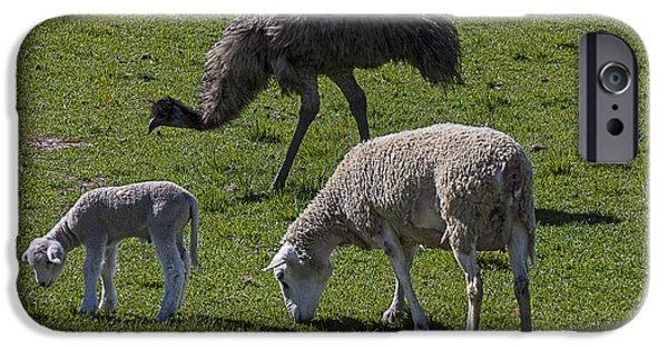 Emu And Sheep IPhone 6s Case
