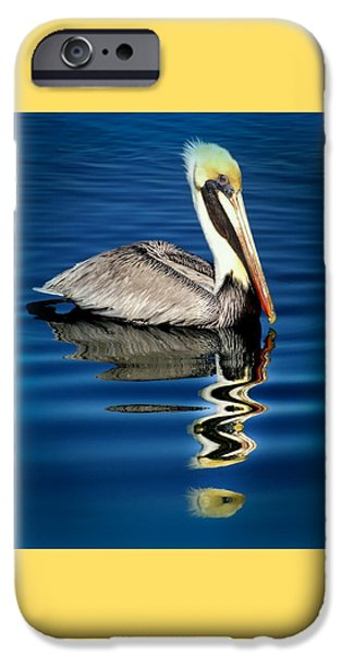 Pelican iPhone 6s Case - Eye Of Reflection by Karen Wiles
