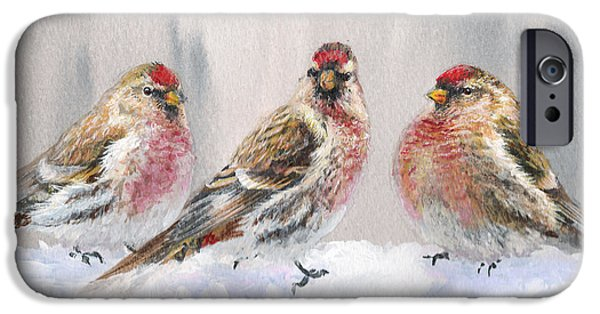 Snowy Birds - Eyeing The Feeder 2 Alaskan Redpolls In Winter Scene IPhone 6s Case