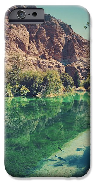 Desert iPhone 6s Case - Fish Gotta Swim by Laurie Search
