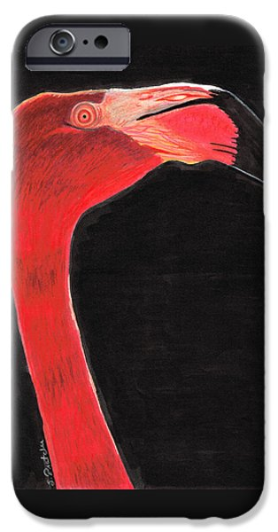 Flamingo Art By Sharon Cummings IPhone 6s Case