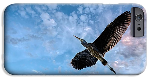 Flight Of The Heron IPhone 6s Case by Bob Orsillo