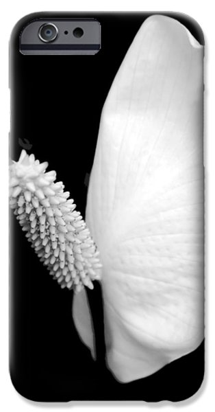 Lily iPhone 6s Case - Flower Power Peace Lily by Tom Mc Nemar