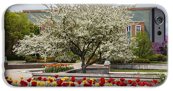 Flowers And Tree At Michigan State University  IPhone 6s Case