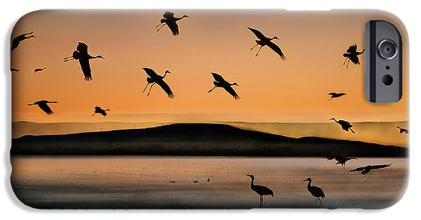 Fly-in At Sunset IPhone 6s Case