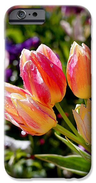 Fresh Tulips IPhone 6s Case by Rona Black