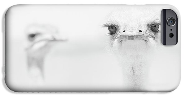 Funny Ostrich IPhone 6s Case