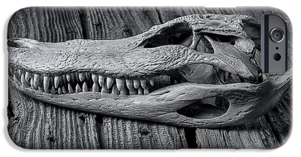 Gator Black And White IPhone 6s Case